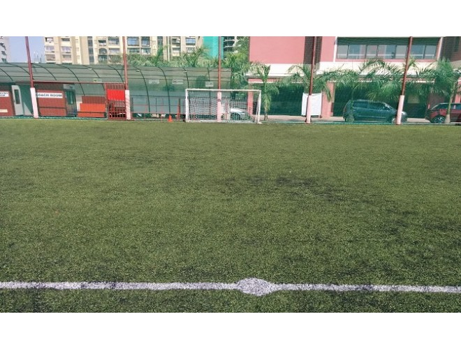 Dream Sports Fields - Andheri  213255thumb-660x500